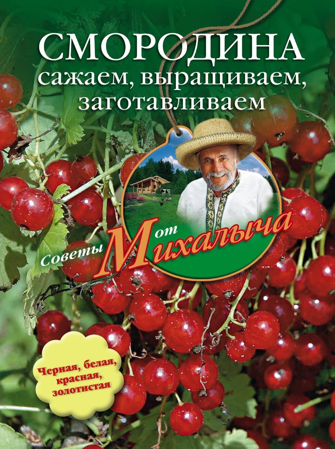 Николай Звонарев Смородина. Сажаем, выращиваем, заготавливаем н м звонарев бахчевые культуры сажаем выращиваем заготавливаем лечимся