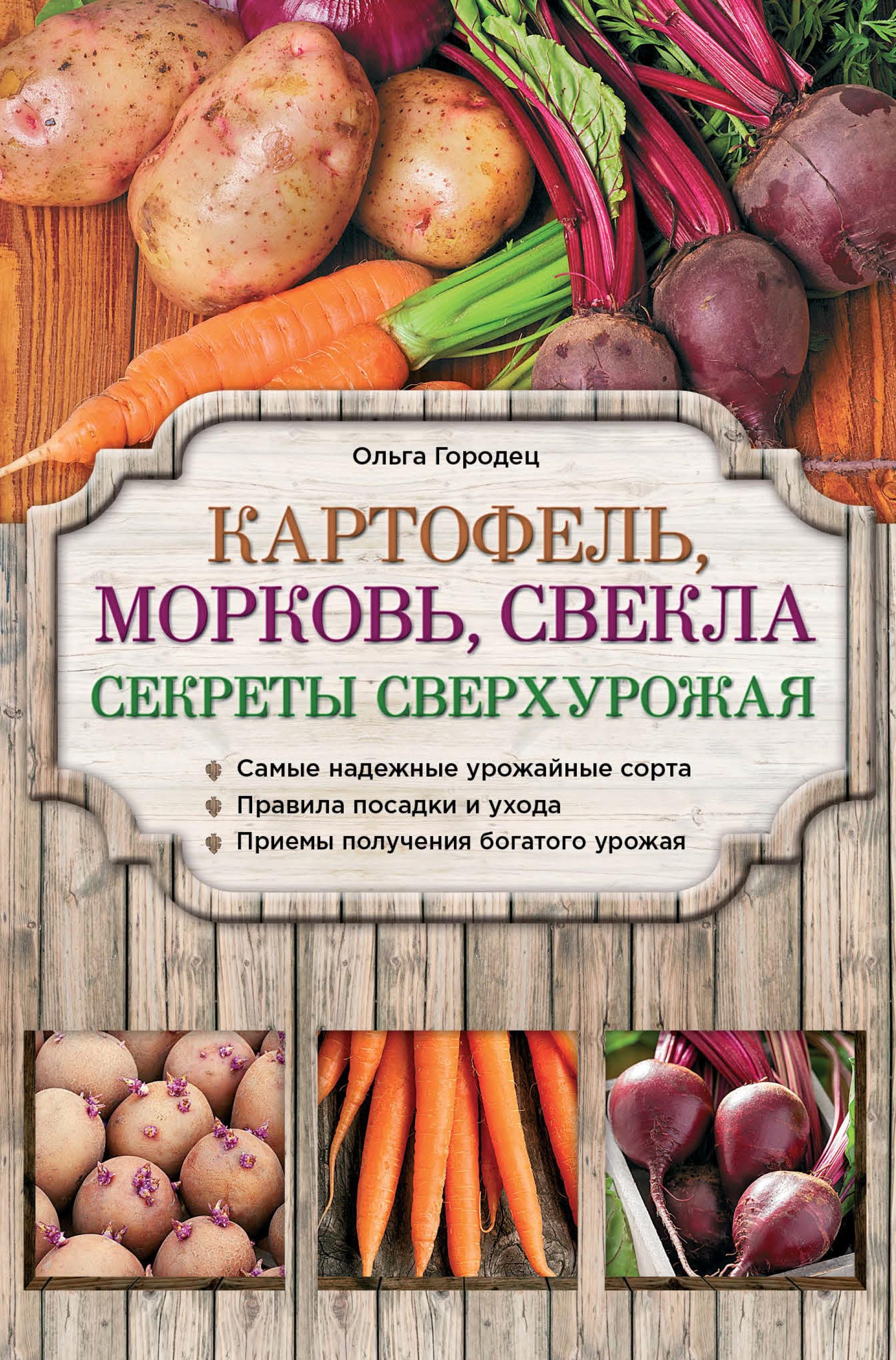 Ольга Городец Картофель, морковь, свекла. Секреты сверхурожая анна белякова картофель морковь свекла