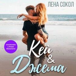 Сокол Лена Кей&Джема обложка
