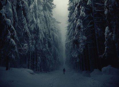 Бирюков Артем Евгеньевич — Форточка в «Счастье»