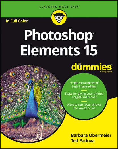 Barbara Obermeier Photoshop Elements 15 For Dummies agi team creative photoshop elements 9 digital classroom isbn 9781118017982