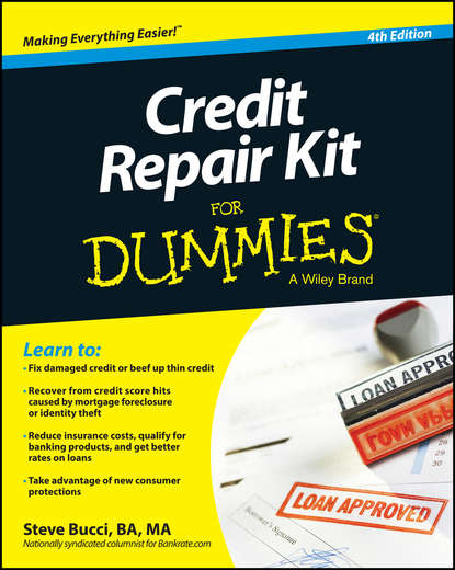 Steve Bucci Credit Repair Kit For Dummies 16pcs watch repair tool kit with carrying case for watchmaker