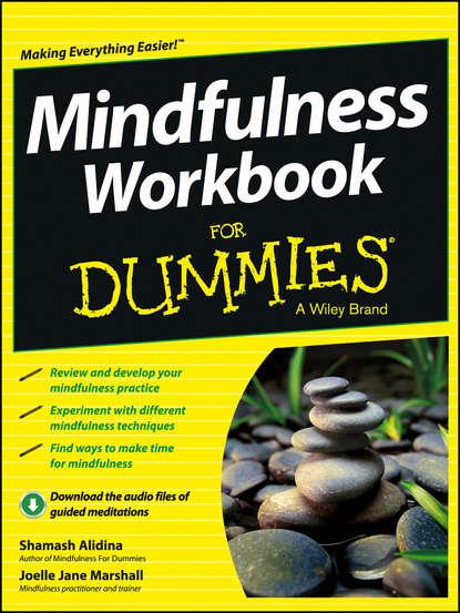 Shamash Alidina Mindfulness Workbook For Dummies недорого