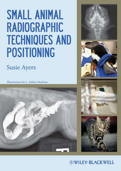 Фото - Susie Ayers Small Animal Radiographic Techniques and Positioning phillip lerche handbook of small animal regional anesthesia and analgesia techniques