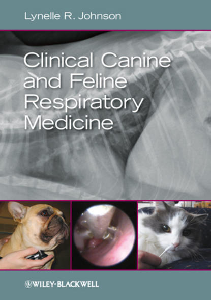 Lynelle R. Johnson Clinical Canine and Feline Respiratory Medicine serrapeptase 80 000iu enzyme may reduce the viscosity of mucus in the respiratory tract
