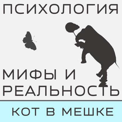 Александра Копецкая (Иванова) Кот в мешке! Часть 4 александра копецкая иванова не такой как все не значит что хуже