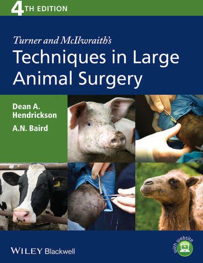 Hendrickson Dean A. Turner and McIlwraith's Techniques in Large Animal Surgery недорого