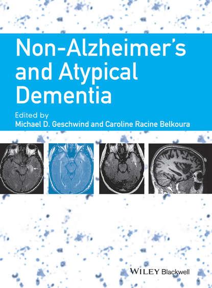 Caroline Belkoura Racine Non-Alzheimer's and Atypical Dementia lipschitzian and non lipschitzian mappings