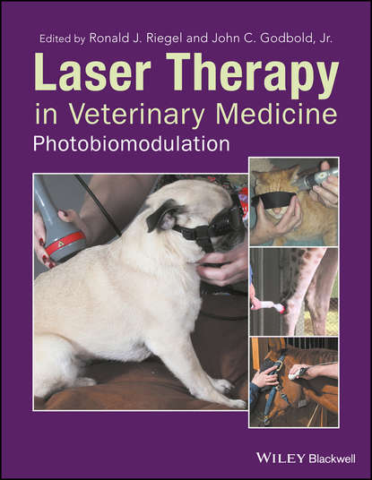 John C. Godbold, Jr. Laser Therapy in Veterinary Medicine. Photobiomodulation lasers in clinical periodontics