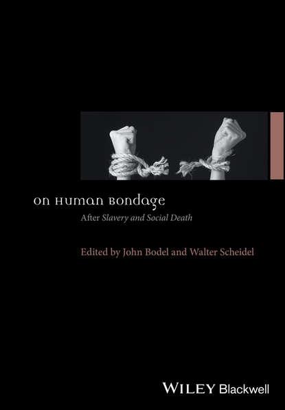 Walter Scheidel On Human Bondage. AfterSlavery and Social Death alessandra de lyte surrender to slavery