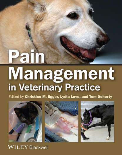 Lydia Love Pain Management in Veterinary Practice s weiner the medical consumer s guide to the diagnosis tre atment and management of pain