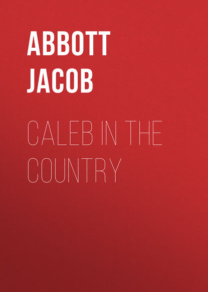 Abbott Jacob Caleb in the Country abbott jacob rollo in the woods