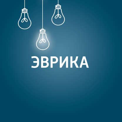 Творческий коллектив шоу «Дышите глубже» Технические новинки сети проводные и беспроводные
