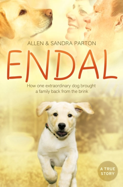 Sandra Parton Endal: How one extraordinary dog brought a family back from the brink joseph allen genealogical sketches of the allen family of medfield with an account of the celebration of the golden wedding of ellis and lucy allen with the address read at the same time also an account of the golden wedding of gershom and abigail allen
