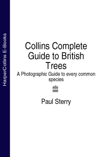 Фото - Paul Sterry Collins Complete Guide to British Trees: A Photographic Guide to every common species betty smith tree grows in brooklyn