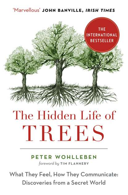 trees outside the forests tof a case of sio river basin kenya Peter Wohlleben The Hidden Life of Trees: The International Bestseller – What They Feel, How They Communicate
