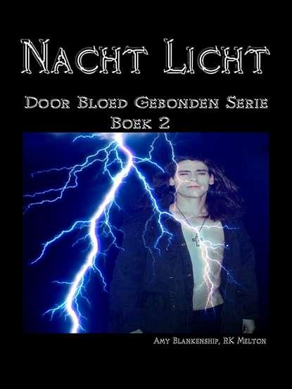 Amy Blankenship Nacht Licht amy blankenship dunkle flammen