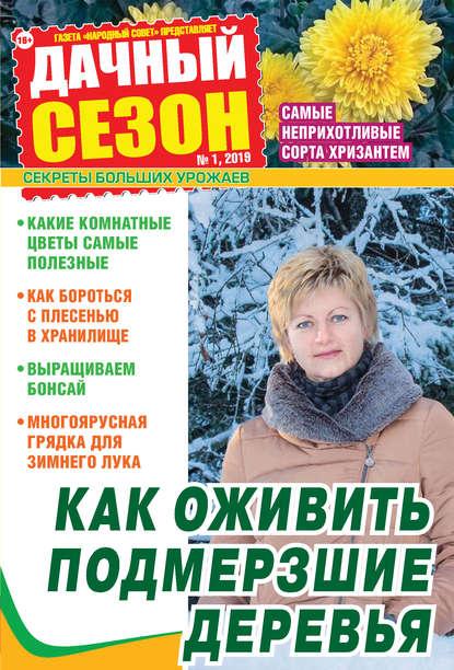 Фото - Группа авторов Дачный сезон №01/2019 группа авторов дачный сезон 02 2019