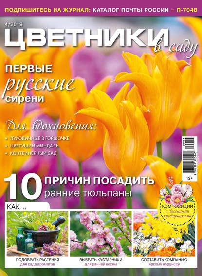 Группа авторов Цветники в саду №04/2019 эксмо цветники 85 лучших композиций