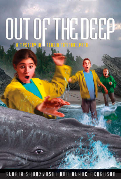 Gloria Skurzynski Mysteries in Our National Parks: Out of the Deep: A Mystery in Acadia National Park недорого