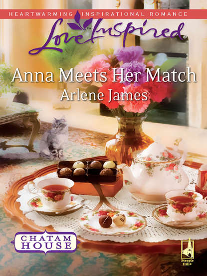 Arlene James Anna Meets Her Match patricia seeley the millionaire meets his match