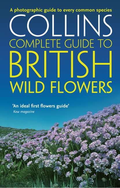 Фото - Paul Sterry British Wild Flowers: A photographic guide to every common species виниловая пластинка hearts and flowers now is the time for hearts and flowers 0646315119817