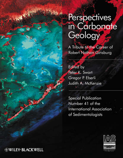 Фото - Judith McKenzie A. Perspectives in Carbonate Geology wladyslaw altermann precambrian sedimentary environments
