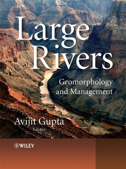 Avijit Gupta Large Rivers недорого