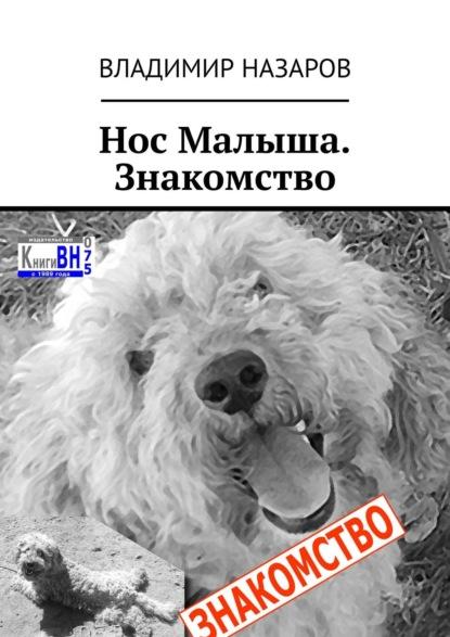 Владимир Назаров - Нос Малыша. Знакомство