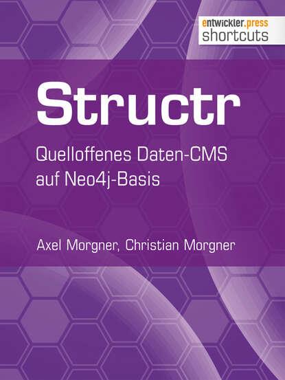 Axel Morgner Structr цена 2017