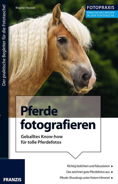 Regine Heuser Foto Praxis Pferde fotografieren