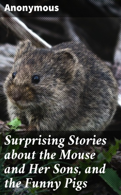 Unknown Surprising Stories about the Mouse and Her Sons, and the Funny Pigs недорого