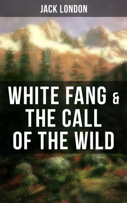 Фото - Jack London White Fang & The Call of the Wild jack london white fang
