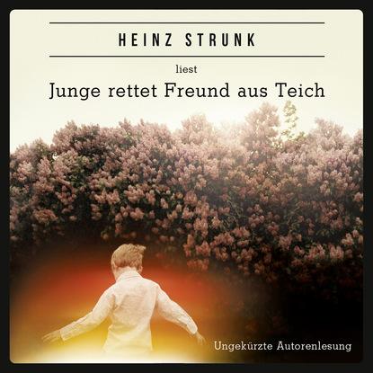Heinz Strunk Junge rettet Freund aus Teich (ungekürzt) недорого