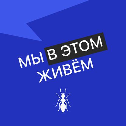 Творческий коллектив Mojomedia Выпуск № 24 s04 — Внезапный недорого