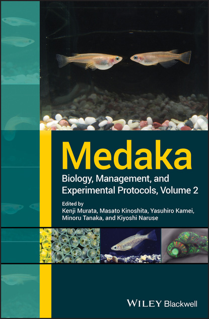 Группа авторов Medaka