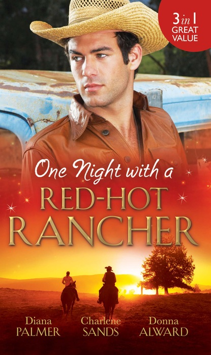 One Night with a Red-Hot Rancher