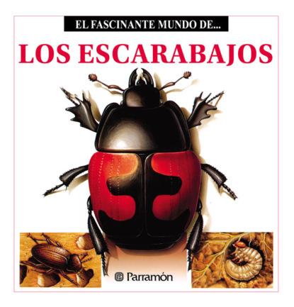 Фото - Maira Àngels Julivert Los Escarabajos maira àngels julivert las abejas