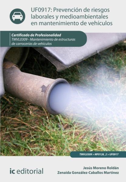 Jesús Moreno Roldán Prevención de riesgos laborales y medioambientales en mantenimiento de vehículos. TMVL0309 antonio josé díaz román mantenimiento seguridad y tratamiento de los residuos en la impresión digital argi0209