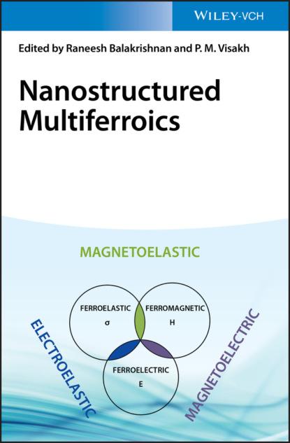 Фото - Группа авторов Nanostructured Multiferroics группа авторов burda 03 2021