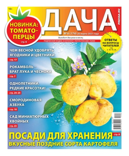 Дача Pressa.ru 06-2021