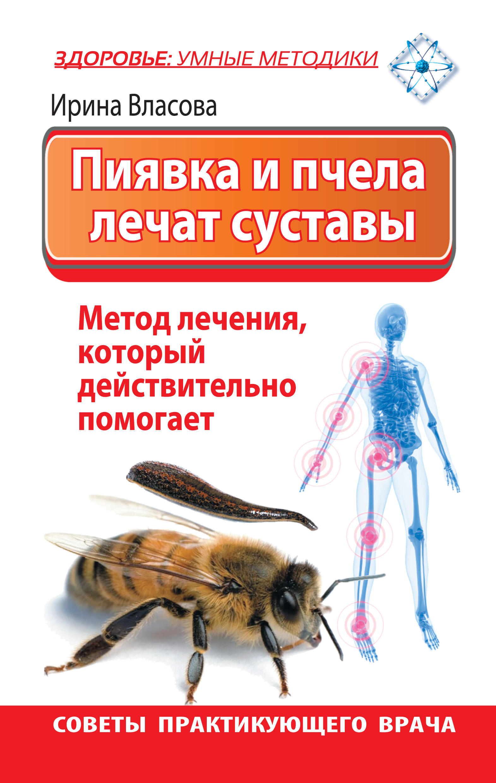Пиявка и пчела лечат суставы. Метод лечения, который действительно помогает. Советы практикующего врача
