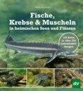 Fische, Krebse & Muscheln in heimischen Seen und Flüssen