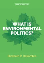 What is Environmental Politics?