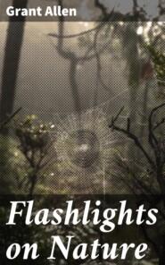 Flashlights on Nature