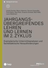 Jahrgangsübergreifendes Lehren und Lernen im 2. Zyklus (E-Book)