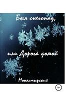 Был снегопад, или Дорога домой