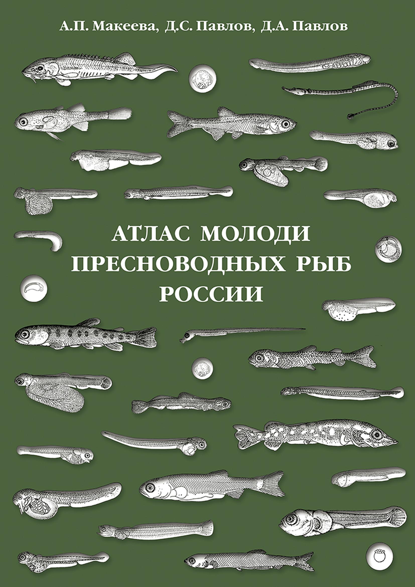 Атлас молоди пресноводных рыб России