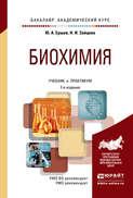 Биохимия 2-е изд., испр. и доп. Учебник и практикум для академического бакалавриата