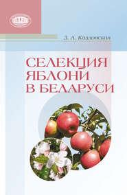 Селекция яблони в Беларуси
